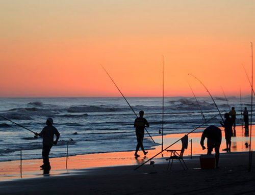 Protocolo para poder ir de pesca