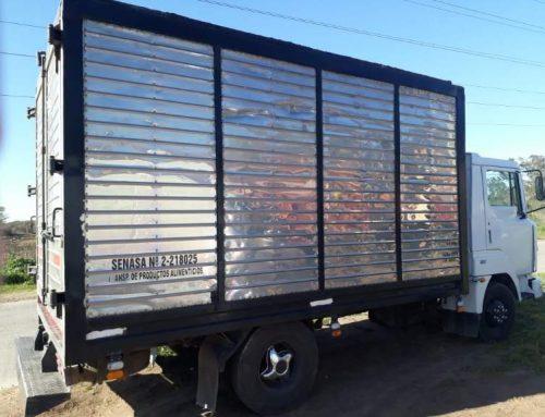 Necochea: Intentó entrar escondido en la caja de un camión, pero lo descubrieron
