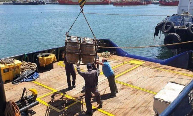 Photo of Mar del Plata: Robaron barriles de cerveza que estaban añejándose en el fondo del mar